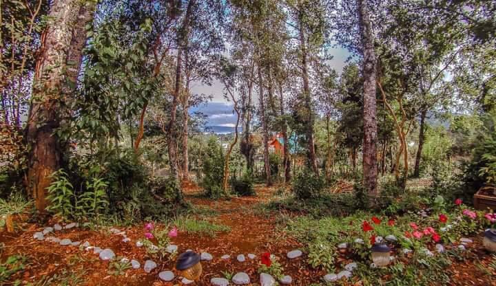 Casa en el bosque con vista al lago Calafquén