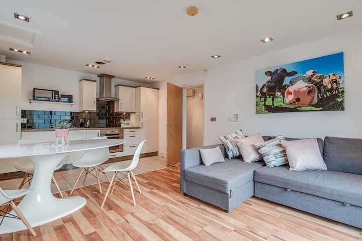 Belfast's Titanic quarter stylish apartment.