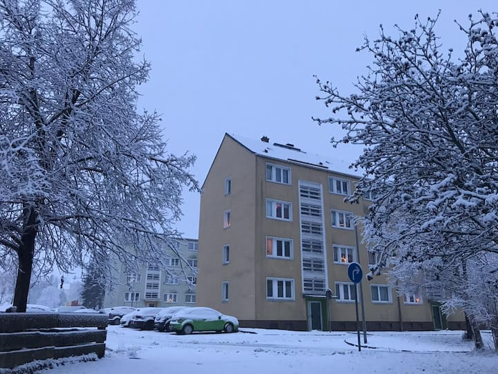 Cheap Apartment in Saxony Mountains