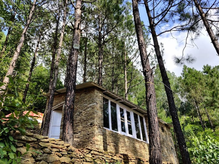 Bugyal Stays - Jungle Resort - Pauri - 4 People