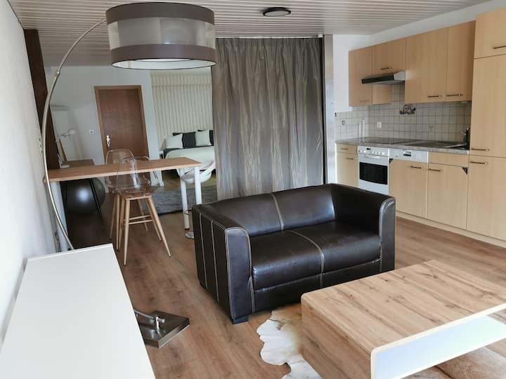 Mini-loft avec terrasse entre Bâle et Bienne