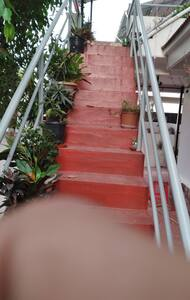 Stair case to enter the home stay