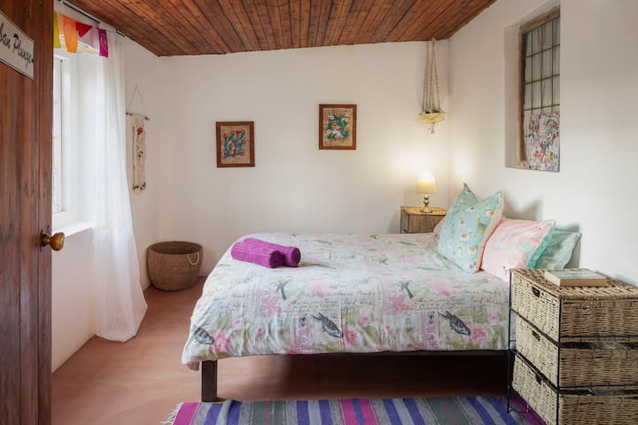 Cuban Plunge Room - Double Bed