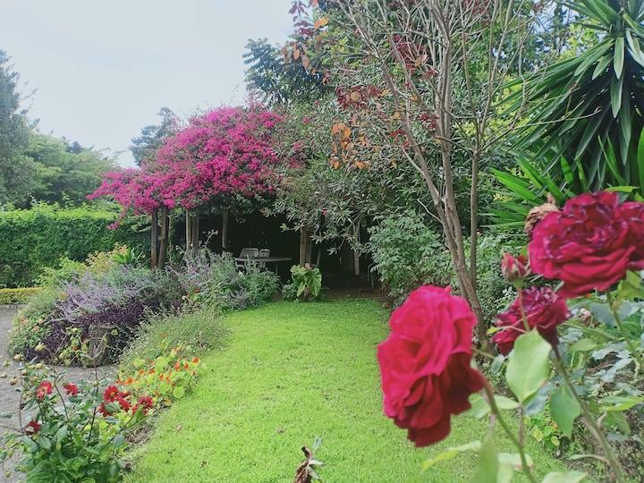 Mama's house, a secret garden getaway with friends