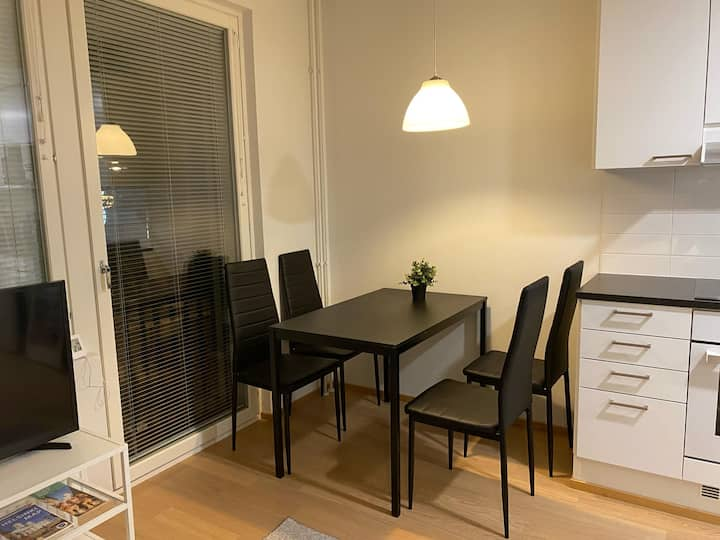 Beautiful apt, 50 m to Helsinki Buss,