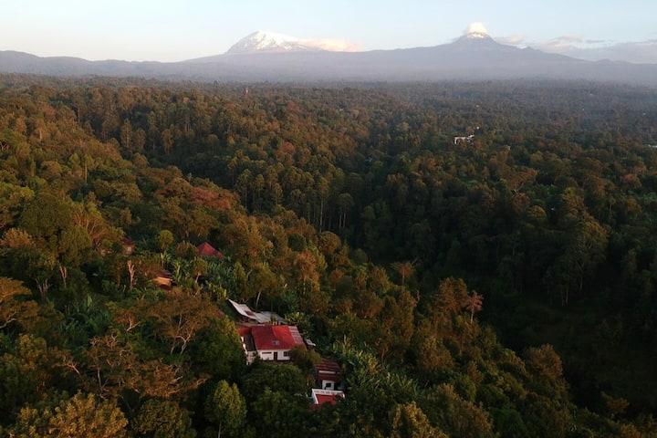 Kilema Paradise ecolodge with AMAZING view! room 5