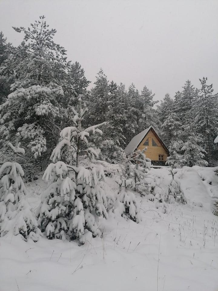 Chalet u sumi ispod vrha Zlatibora