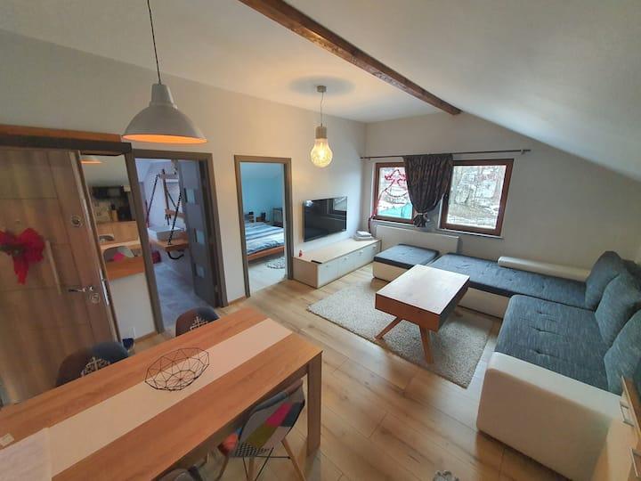 Comfort Home Studio Petrosani