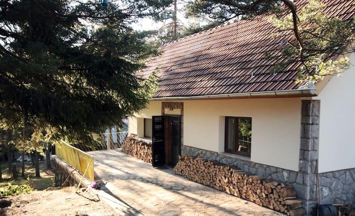 Dedina kuća