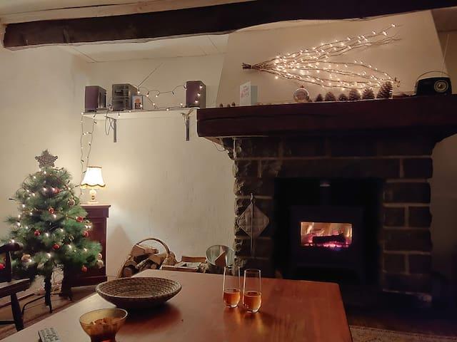 Le salon comprend un canapé convertible en lit deux places, une TV ainsi qu'une cheminée avec un poêle à bois pour vos soirées d'hiver .