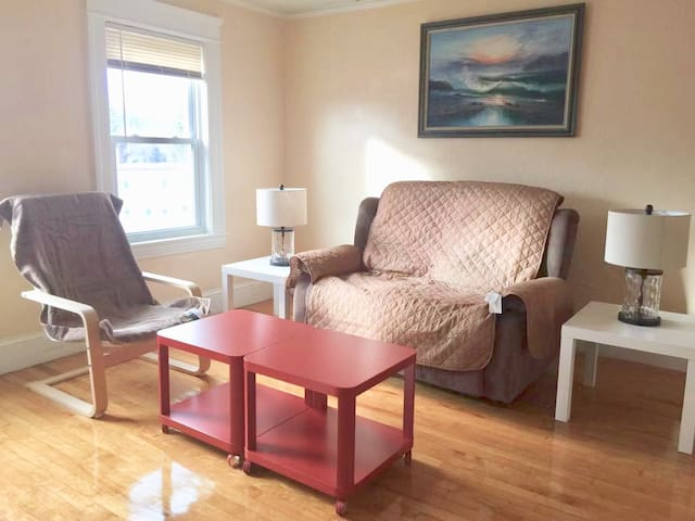 Newly Updated 2-bed Apartment - Burncoat Area