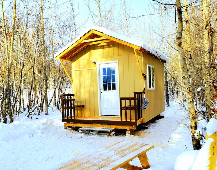 Pinochle Trail Cabin near the Matanuska Glacier