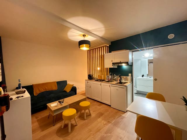 Charmant Studio rénové au cœur de Dijon