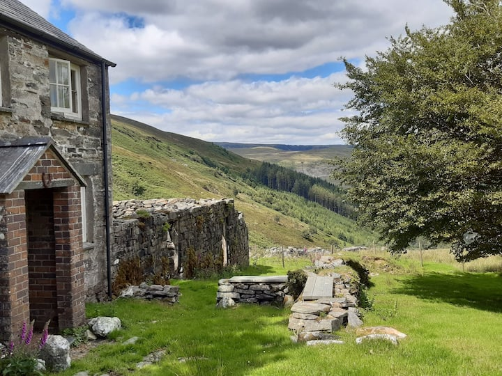 Hafod y Rhedwydd, an off-grid cottage in an SSSI