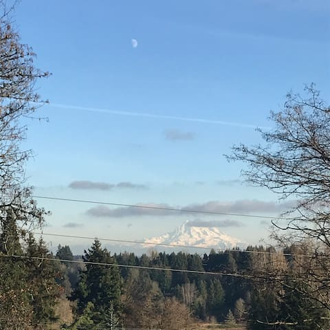 Mt. Ranier View at cozy writing retreat