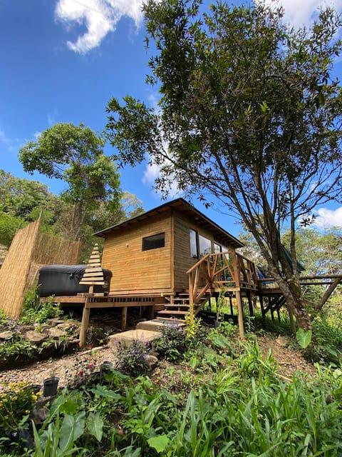 Hermosa Cabaña en la Naturaleza frente al  bosque
