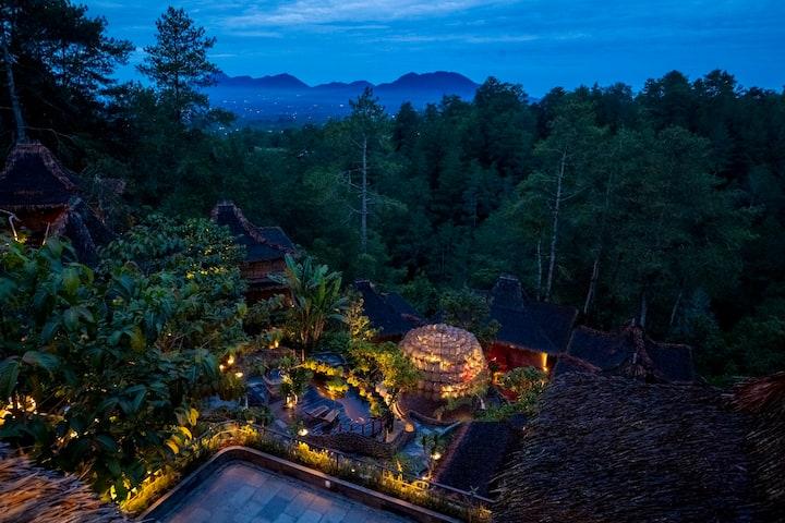 Tira Vilagna Private Room facing Pine Forest