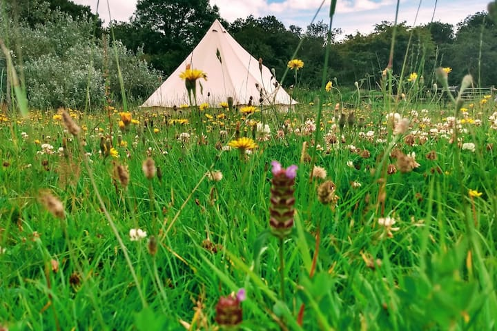Beautiful Quiet 5m Bell Tent @ Knappers