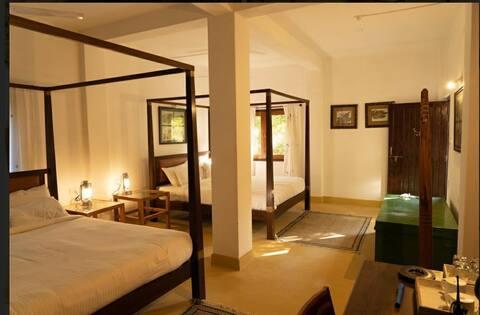 Luxury Tent for Family inside Bandhavgarh Forest