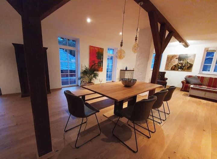 LOFT Wohnung Bernkastel-Kues mit Dachterrasse