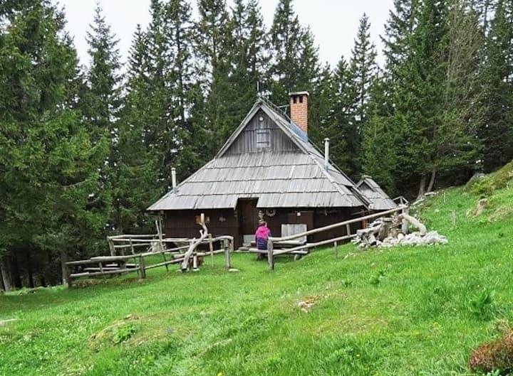 Mountain chalet - Pinja