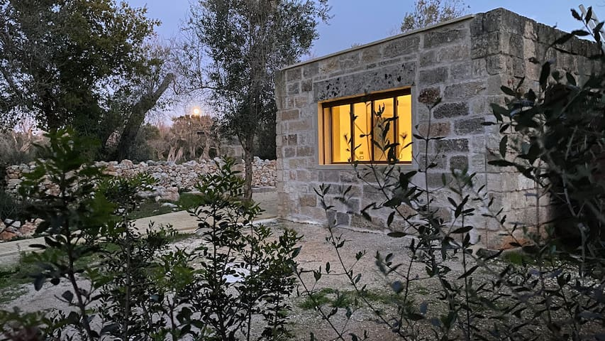 Il Cubetto a stunning mini house in an olive grove