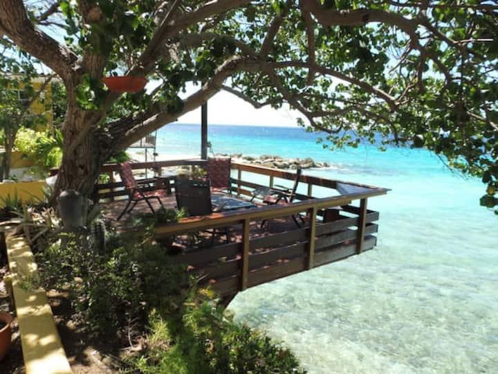 Unique seaside villa with private ocean access.