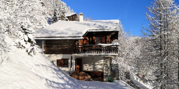 Cozy family chalet, close to village center
