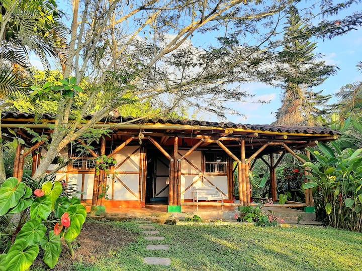 Celeste - Casa de Guadua