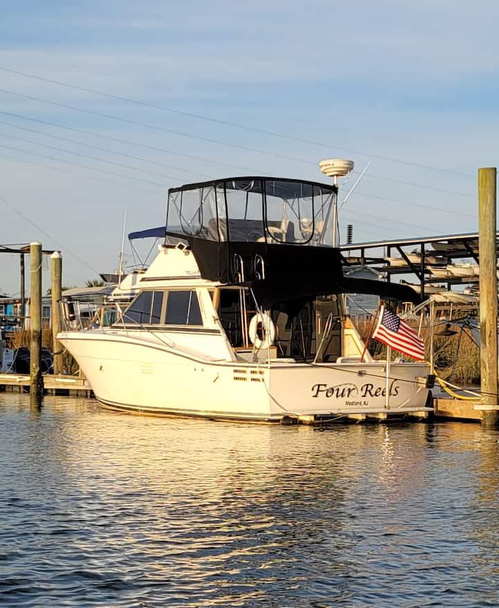 Tybee Island Waterfront Getaway!! Marine Life!!