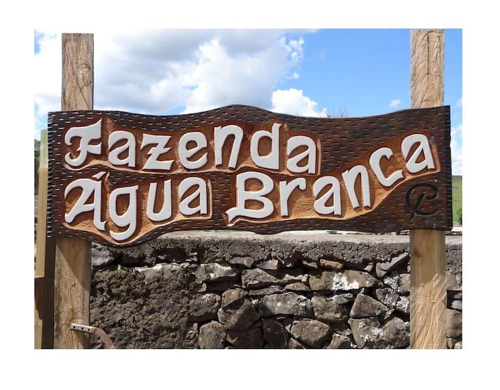 Fazenda Água Branca - Insta @faz.aguabranca_rs