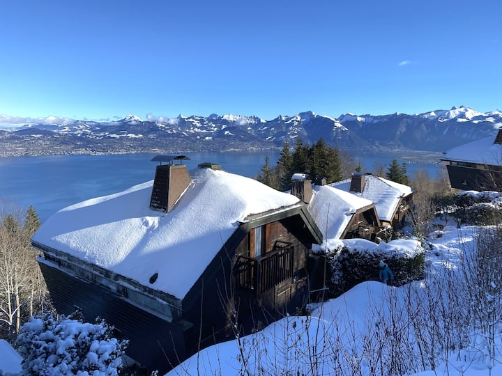 Chalet, amazing view of Lake Geneva, 3 bedrooms