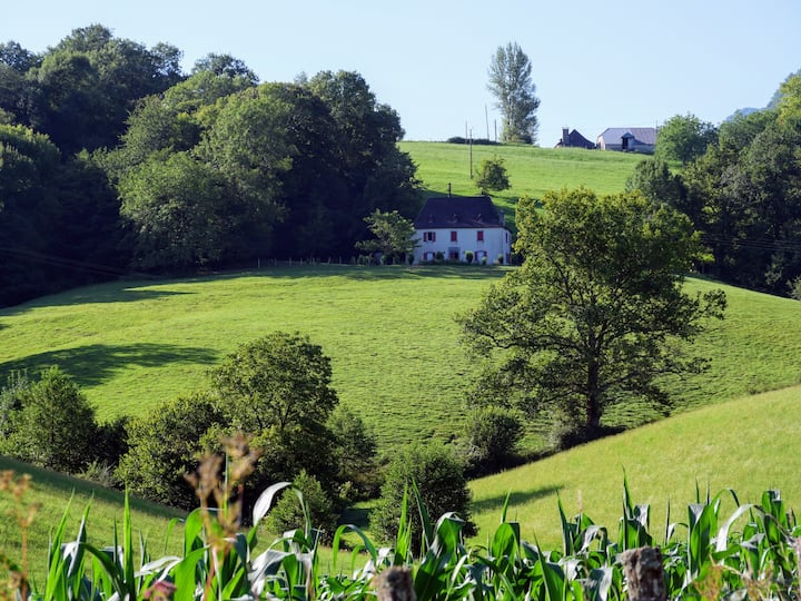 Gîte familial en Haute Soule à Montory Pays Basque