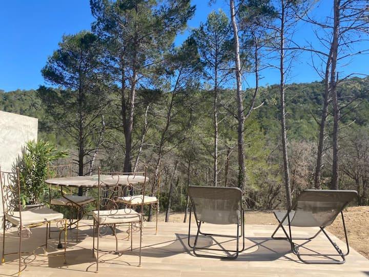 "Le Vallon des Pins en Provence "" Le Syrah """