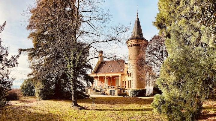 Attic of the Castle