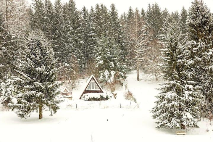 Charmantes Tiny House mitten im Thüringer Wald