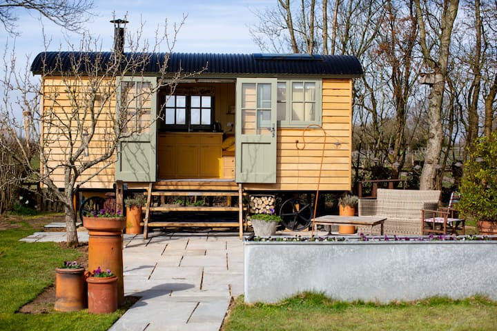 Little Plover Cosy Shepherd Hut set in our Orchard
