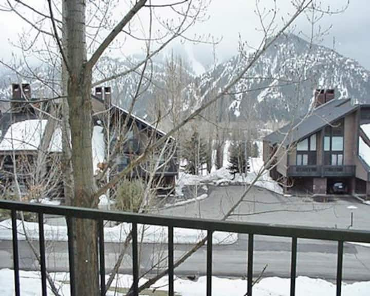 2 Bed, 2 Bath Villa near Sun Valley Ski Resort!