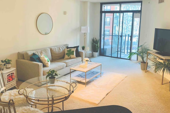 Cozy 1 BR Apartment in Navy Yard/Capitol Hill