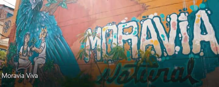 Eco House Moravia Viva