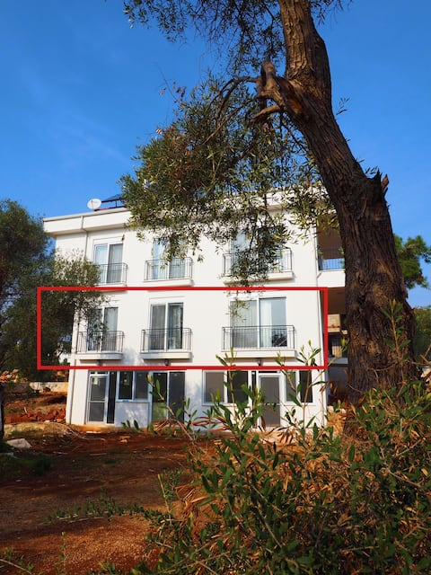 White House next to the forest, 350m to the sea