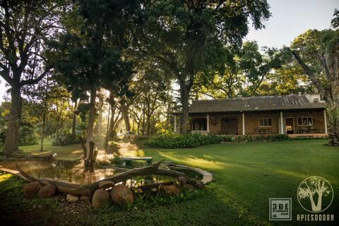 Apiesdoorn farm house in a huge Jungle Garden.
