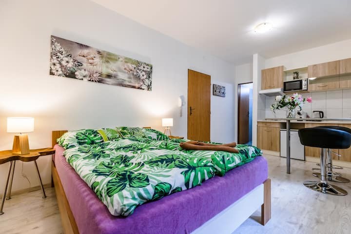 Apartmán Křenka 6