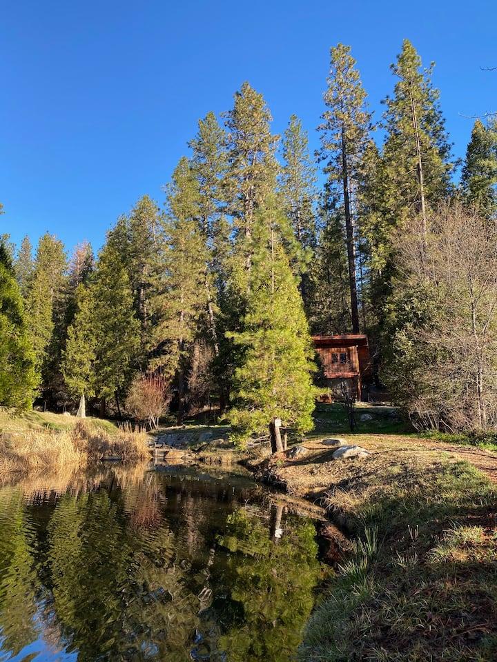 Designer Gold Miner's Cabin on Pond-Fully Restored