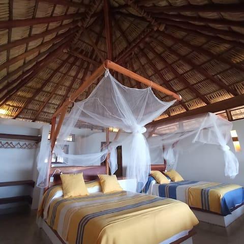 Suite Gecko, 2 double beds