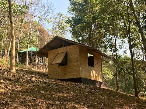 Bamboo Hut in the forrest with swimming pool.