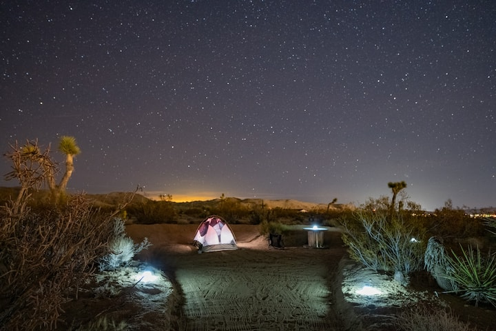 Joshua Tree Glampground - Coyote Outlaw Camp
