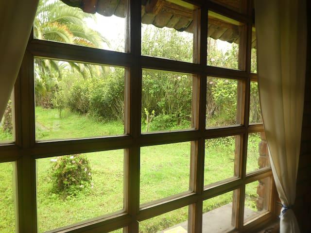 Vista por la ventana de la cabaña