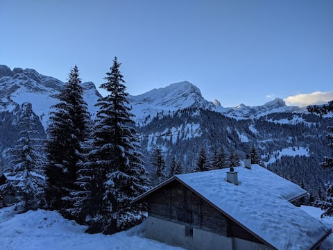Magnifique petit cocon au cœur des Alpes