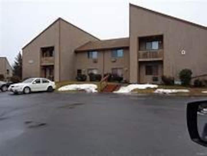 CATSKILL nice 2 BR condo in the woods Woodridge NY